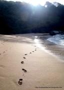 Butterfly beach - piękna kameralna, niezamieszkana... Punkt wycieczki łodzią.